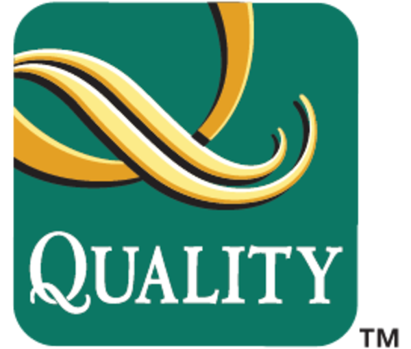 Medium brandpage quality logo